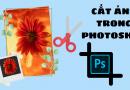 Các cách cắt ảnh trong Photoshop